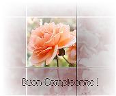 Auguri rosa