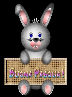 Coniglio Pasquale