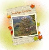 Nostalgia d'autunno