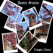 Busto Arsizio-Collage Tempio Civico